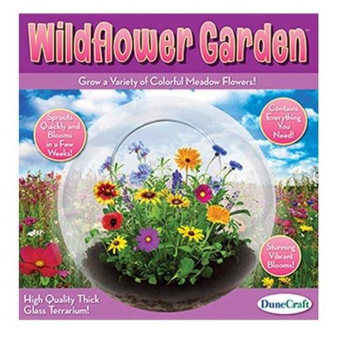 Wildflower Garden Glass Terrarium - Grow Your Own Blooms DuneCraft